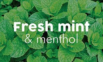 Fresh Mint & Menthol