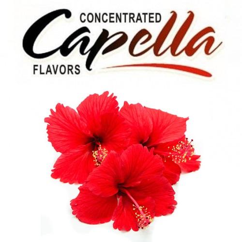 Capella Hibiscus Flavor