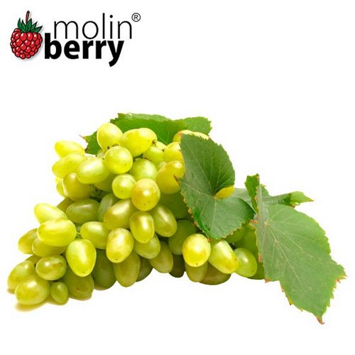 Molinberry Queen Grapes Flavor